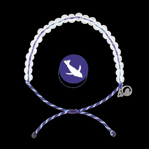 4Ocean Harp Seal